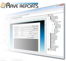 Rave Reports 11 Developer